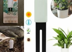 Un objet connecté qui permet de surveiller la santé de vos plantes